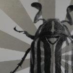 Beetle Starburst Poster Close Up